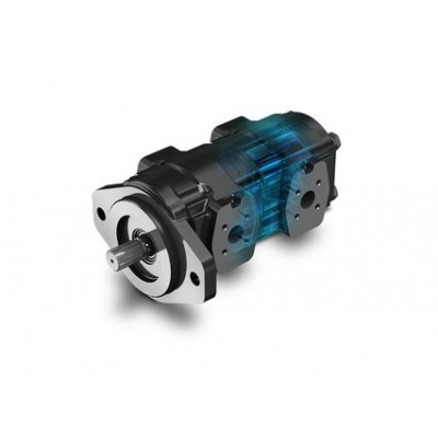 Cast Iron Polaris Gear Pump